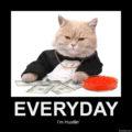 Cat everyday hustiln'