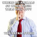 Where animals go